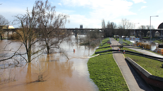 Worcester flood 2014 on bank of the river Severn with cathedral and the hive in the background.