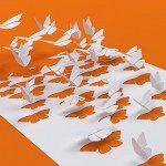 2_butterflies_555x310