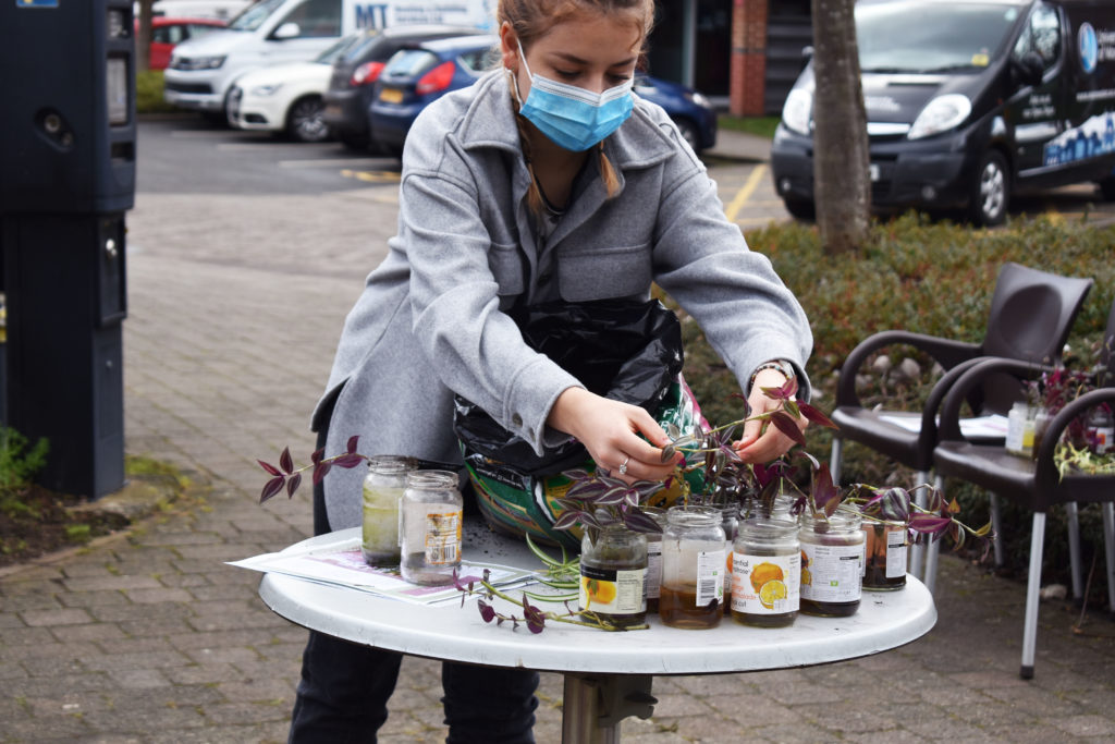 houseplants-and-wellbeing-potting-workshop