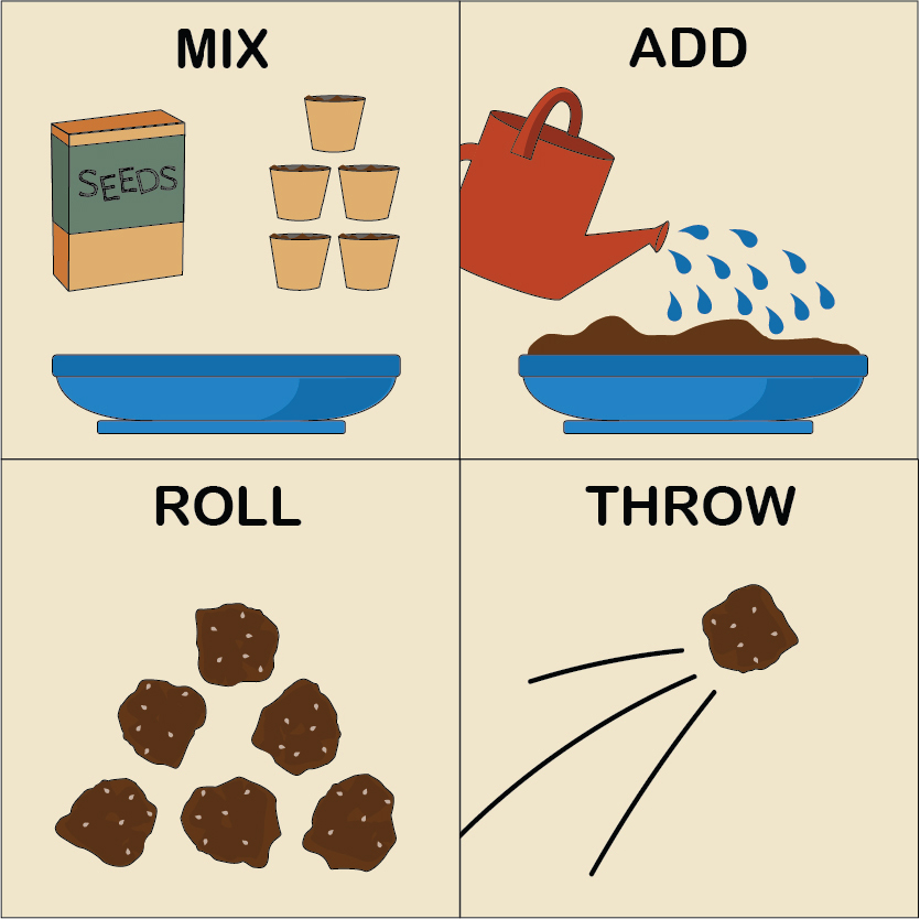 Illustration-showing-how-to-create-a-wildflower-seed-bomb-Go-Green-Week-2021