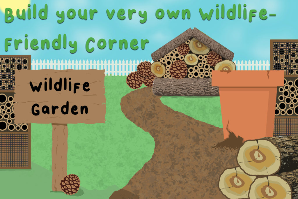 Illustration-to-show-a-wildlife-garden-including-log-piles-and-bee-homes