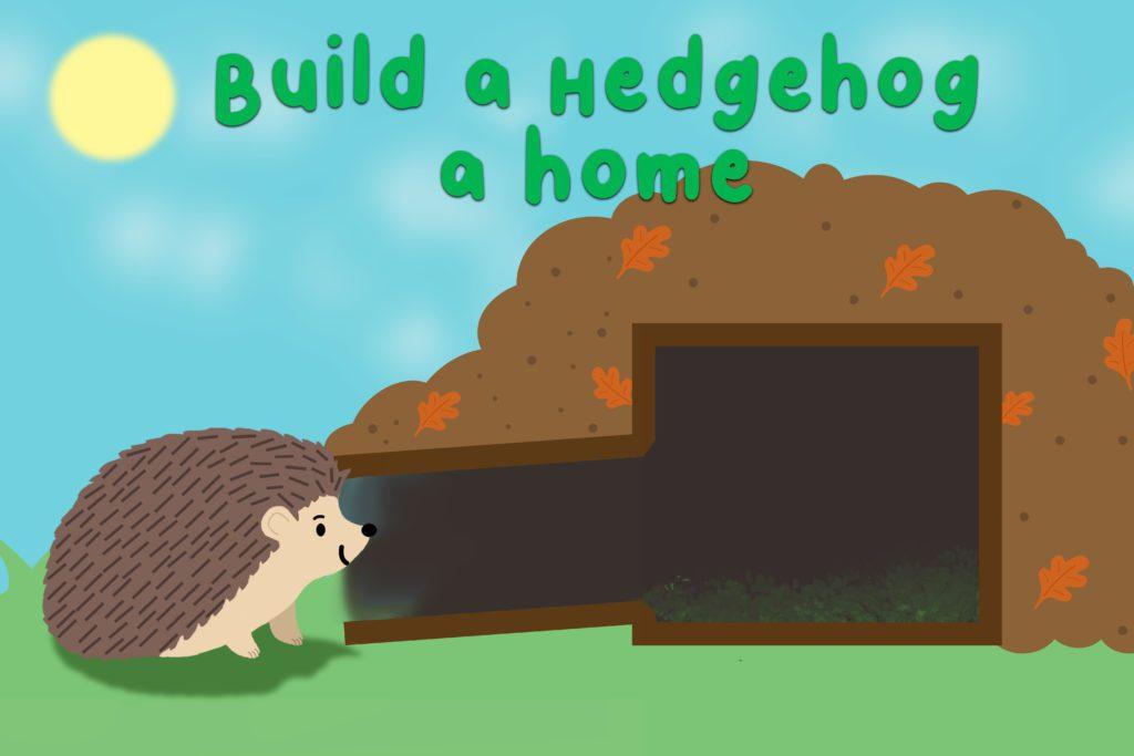 An-illustration-to-show-a-hedgehog-home