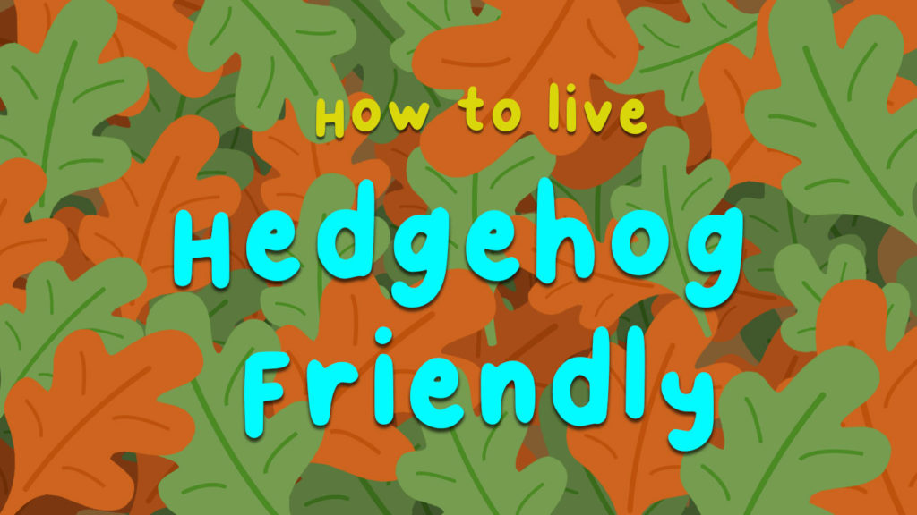 An-illustration-of-text-reading-how-to-live-hedgehog-friendly